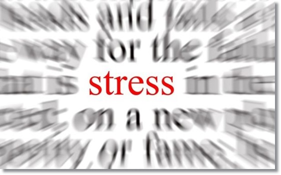 ストレス耐性